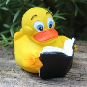 0853 | Lese Duck